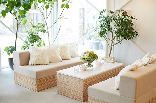 観葉植物やお花のある店内と、落ち着くソファ