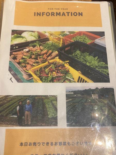 無農薬野菜ご紹介のチラシ