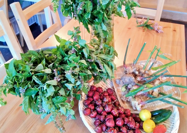 農薬・化学肥料不使用の自然栽培のお野菜たち